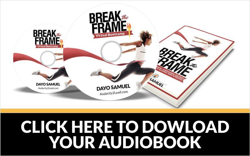 break the frame audiobook set